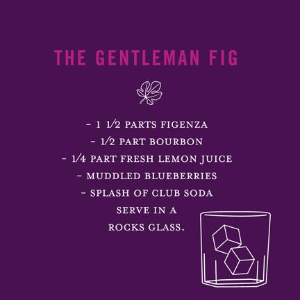 The Gentleman Fig